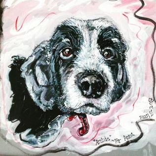 Dog Archie